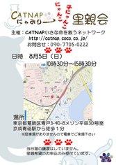 Catnap5