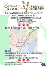 Catsatooyakai2