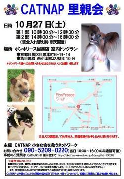 Satooyakai1027jpg
