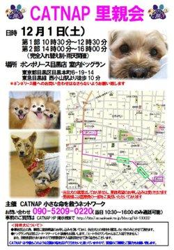 Satooyakai1201_2