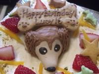 0224_cake2