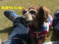 Kokyo0322_2