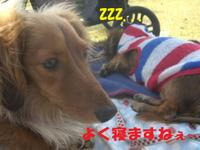 Kokyo0322_4_1