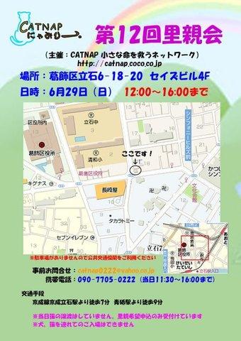 629catsatooyakai