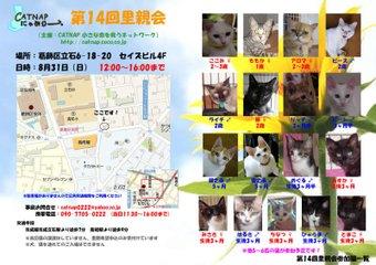 Cat831satooyakai