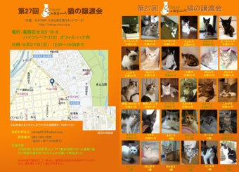 Catsatooyakai927new