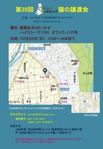 1025catsatooyakai