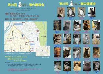 1025catsatooyakai2