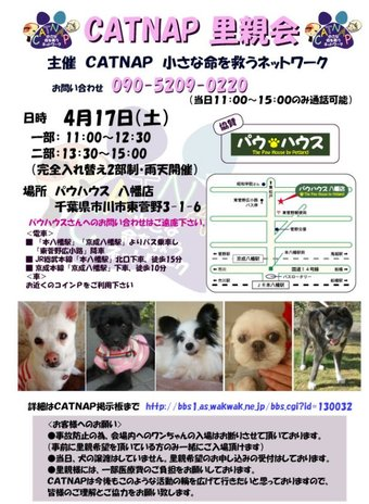 Satooyakai417