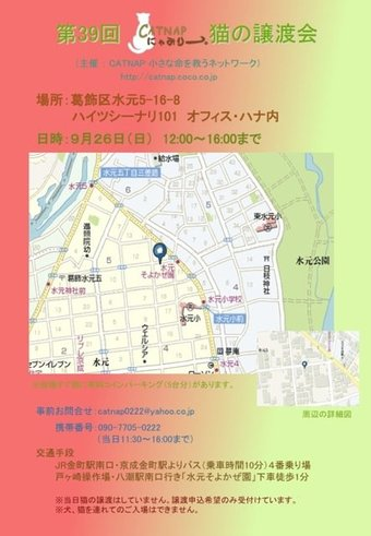 926nekosatooyakai