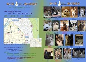Neko1128satooyakai
