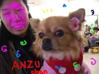 Anzu1