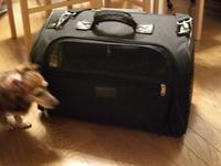 Carrybag1