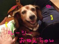 Lucy_nesan