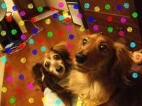 Lucy_ricky3_16_2