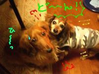 Lucy_ricky3_9_2