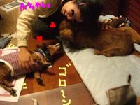 Lucy_ricky4_4_1