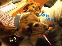 Lucy_ricky4_4_2