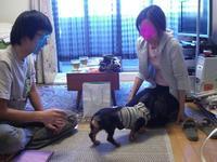 Tsubasa10_8_5