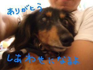 Tsubasa9_27_1_1