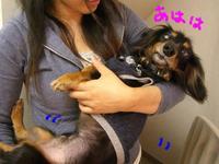 Tsubasa9_29_2