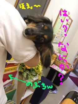 Tsubasa_9_26_1_1