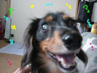 Tsubasa_big_smile_1