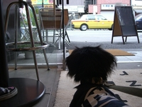 Tsubasa_cafe6