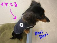 Tsubasa_doridori1