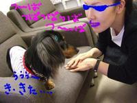 Tsubasa_f3_1