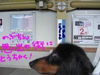 Tsubasa_train4