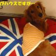 Minami0501_4