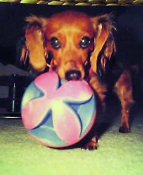 Babylucyball
