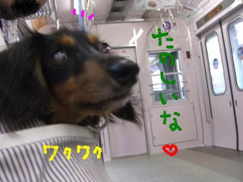 Tsubasa_train2